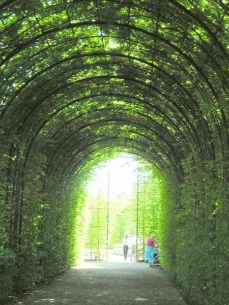 Alnwick Gardens And Castle Garden Ftempo